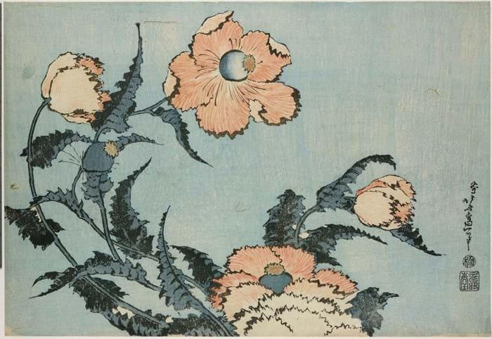 WEB Hokusai 4 22-5-17.jpg