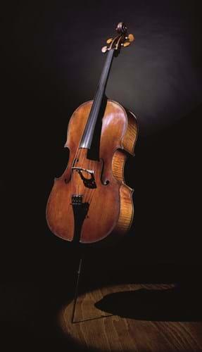 Guadagnini cello